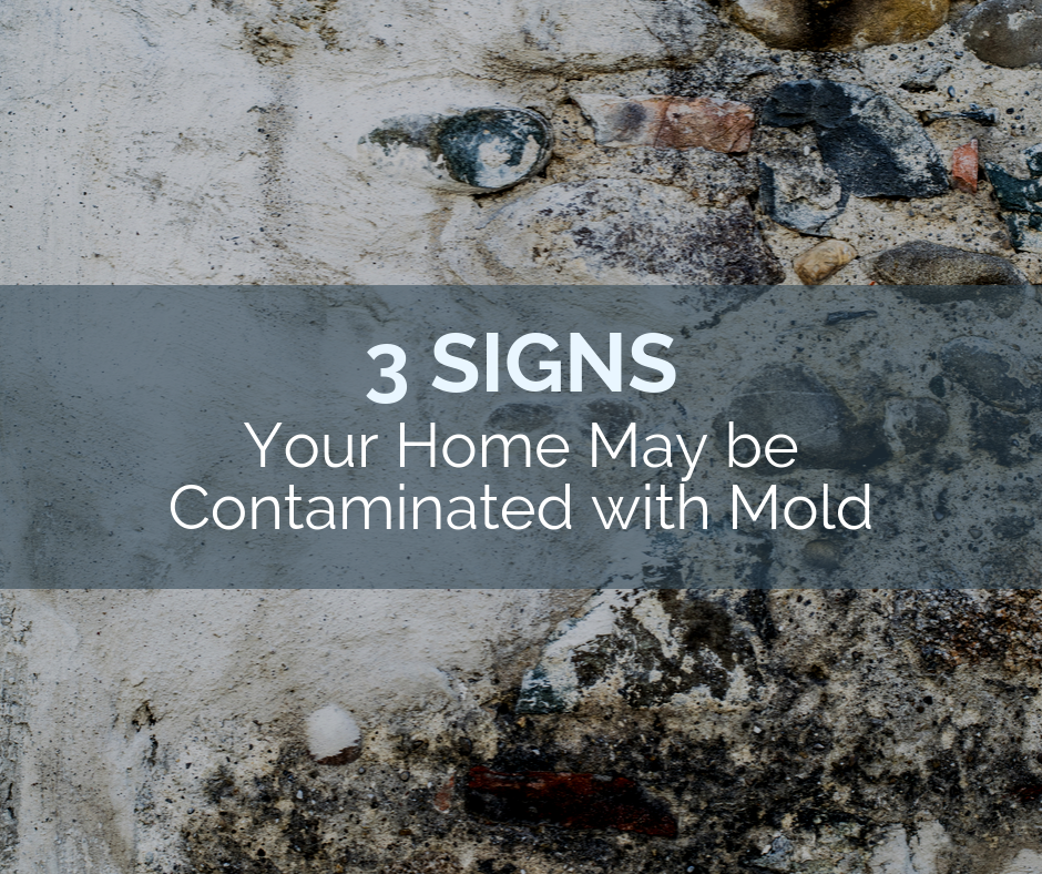 3 Signs Your Home May be Contaminated with Mold